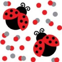 ladybug-fancy-confetti-t5267